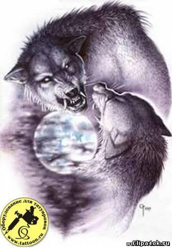 через отца ворон волк пантера картинки икона Богоматери почитается